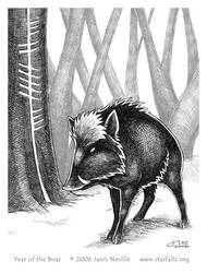 2007 - Year of the Boar by Starfallz