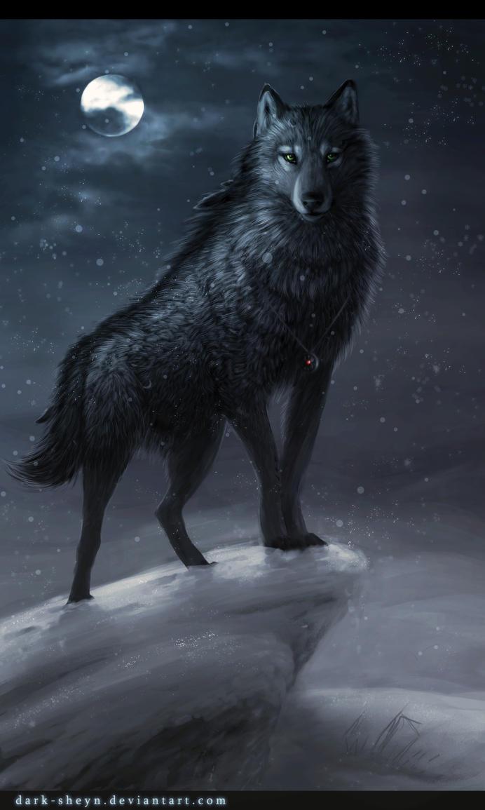 Ryuu Winter_night_by_Dark_Sheyn