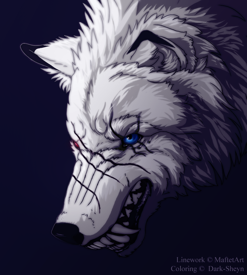 Bad wolf by Dark-Sheyn