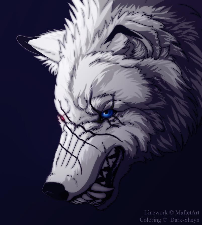Bad wolf by Dark-Sheyn