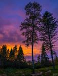Backyard Sunsets in Northern Minnesota 2