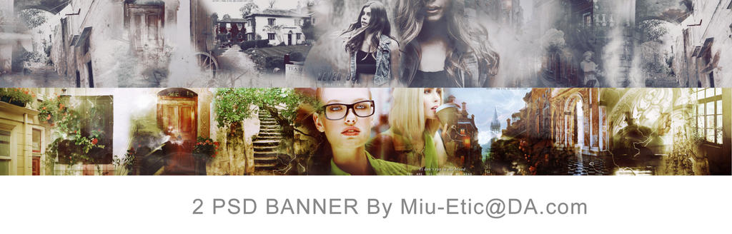 2 PSD Banner by Miu-Etic
