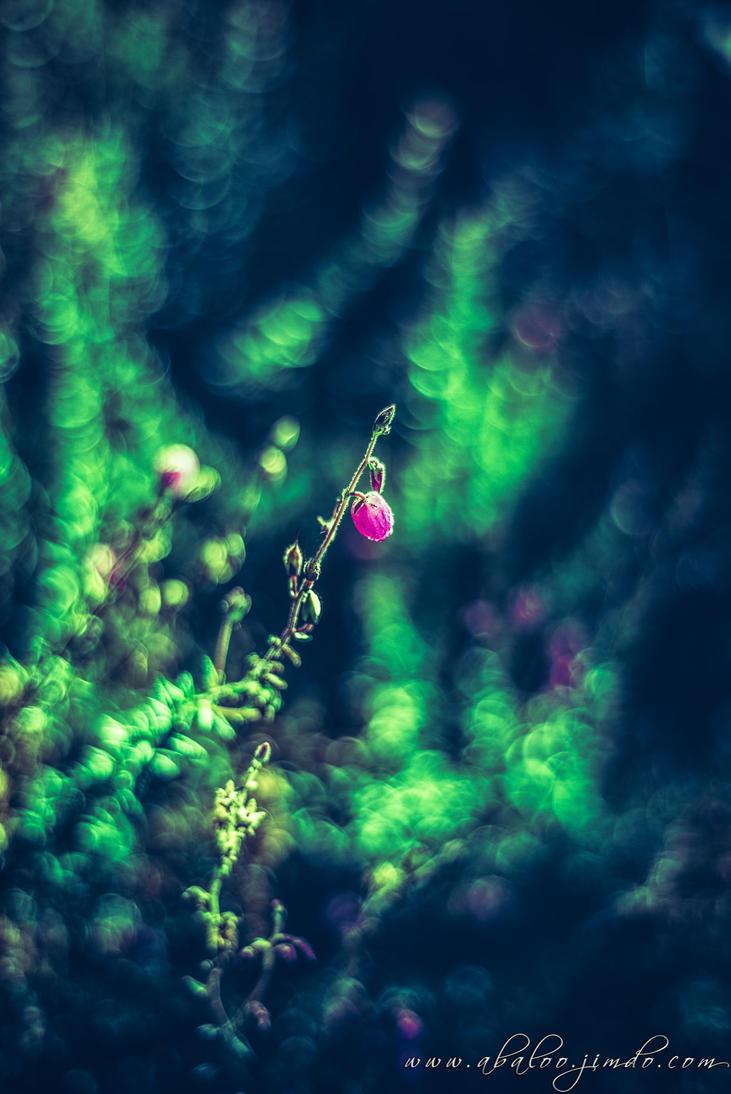 Little Rain by abaloo72