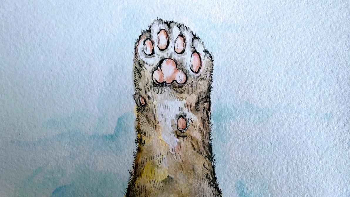 Cat's Paw Watercolor by AlexanderCrW