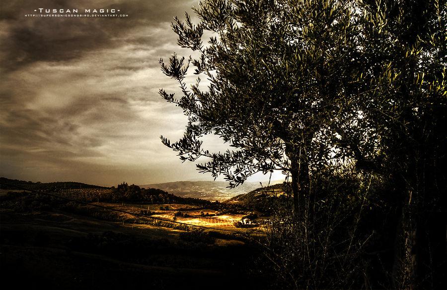 Tuscan Magic