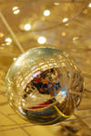 Inside the Ball