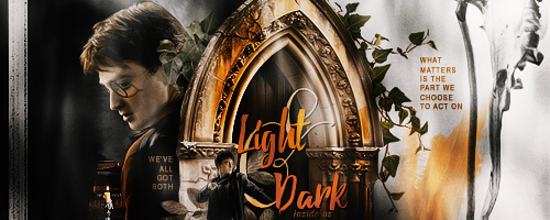 242 - Harry Potter by Vanessax17