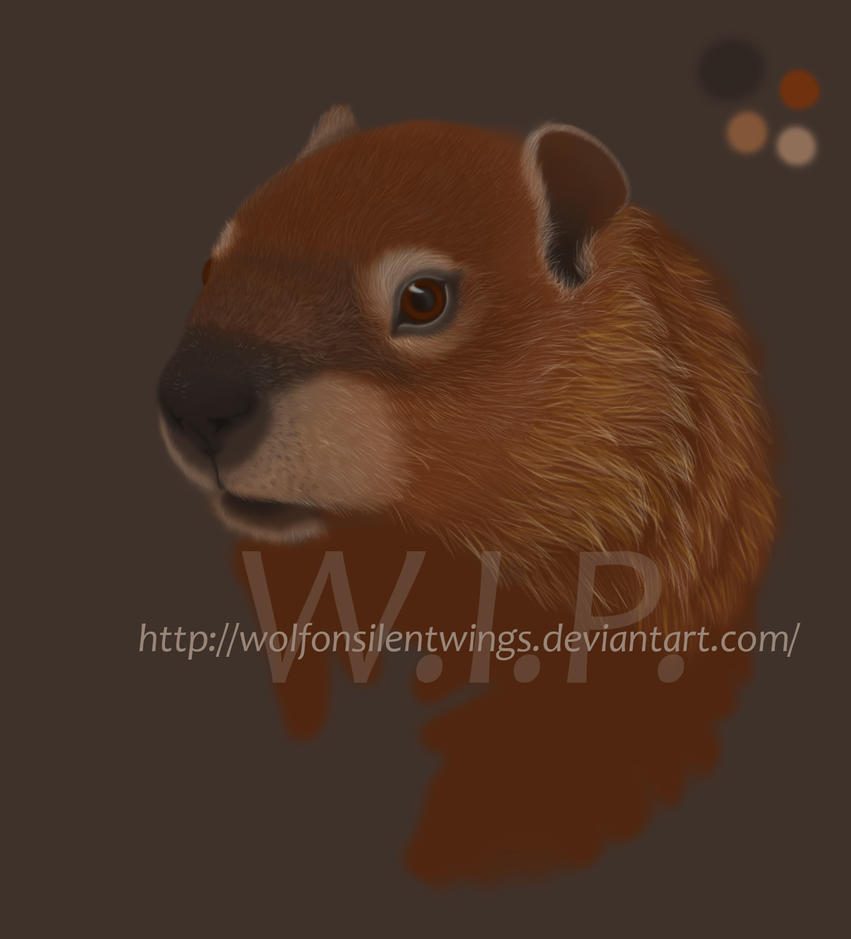 Groundhog W.I.P. by WolfOnSilentWings