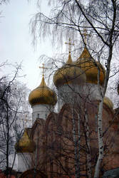 Onion Domes and Birch Trees