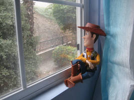 Woody sightseeing by drockNation