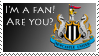 Newcastle United Stamp by MooDaddy