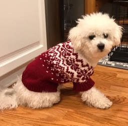 Nordic Paws Dog Sweater by Cogsie