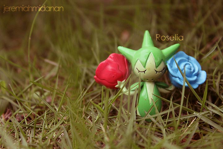 Poke-Shoot : Roselia by MayaIdanan