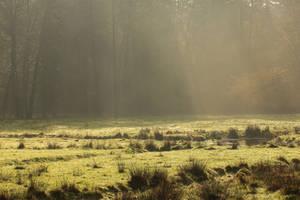 Meadow 3 by landkeks-stock