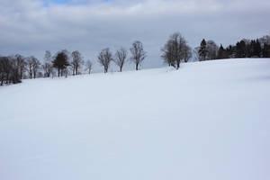 Winter 5 by landkeks-stock