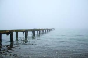 Fog 3 by landkeks-stock