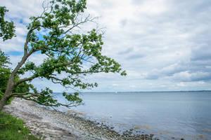 Beach 2 by landkeks-stock