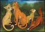 Warrior Cats Family
