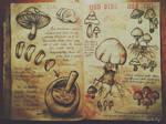 Mushrooms - Journal 3 Gravity Falls
