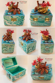 Hermit Crab Box