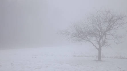 Wind and Wuthering
