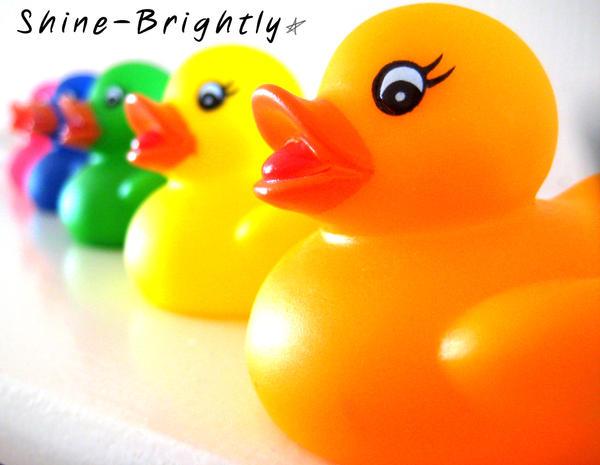 Shine-Brightly's Profile Picture