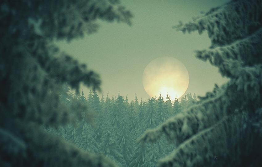 Der Wolfsmond by Knechter