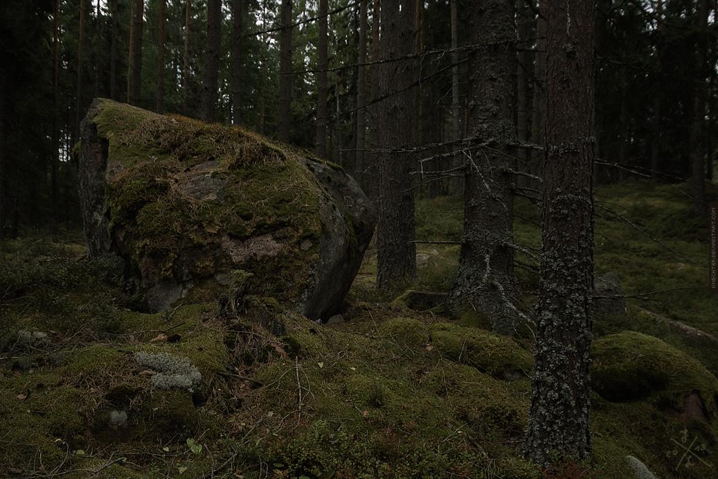 Tod eines Wanderers der pfiff by Knechter
