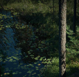 Seerosenwaldseesommer by Knechter