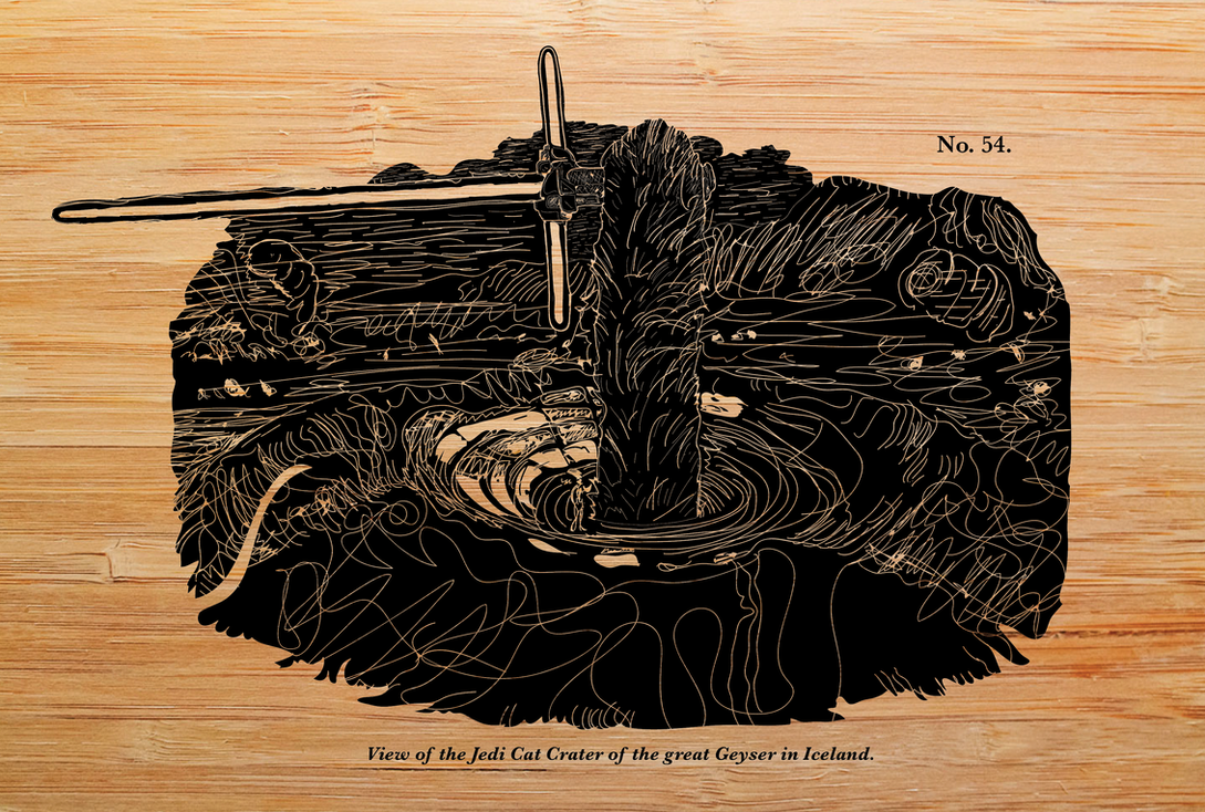 JEDI CAT CRATER (-woodcut-) by SnD-Frostey