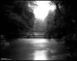 Fog by crazyIvan969