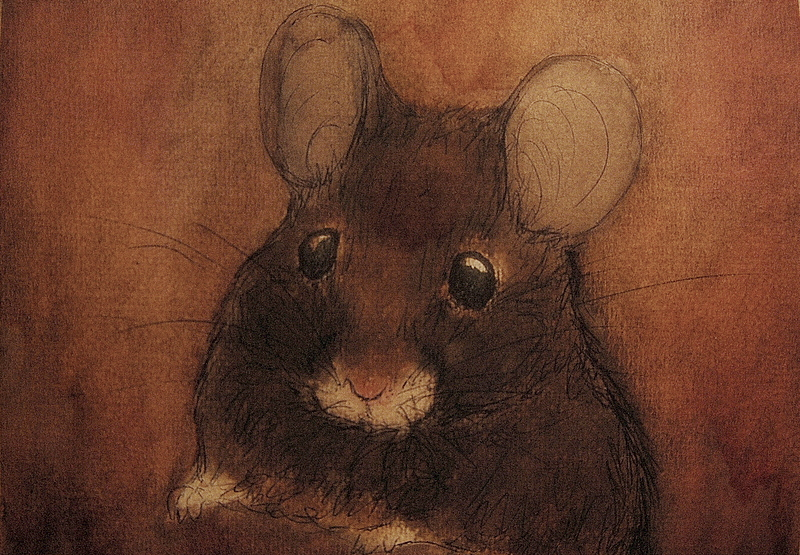 mouse by moussee