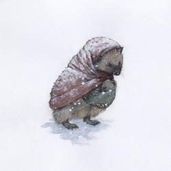 Through the Blizzard