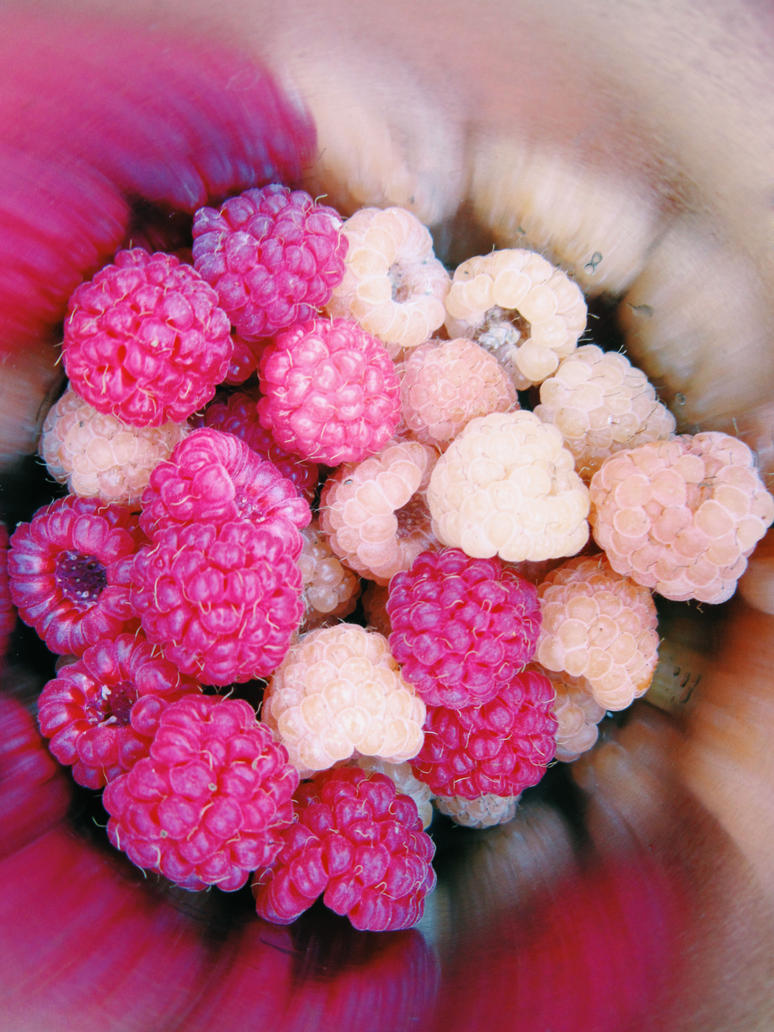 Raspberry by Ana12719