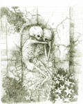 sketeton of the drawing