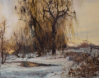 .   Winter In Roskishne.  Not far from Lugansk. by dismwork