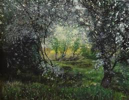 Flowering Blackthorn by dismwork