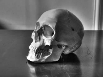 Totenkopf - Skull by Wiggles20