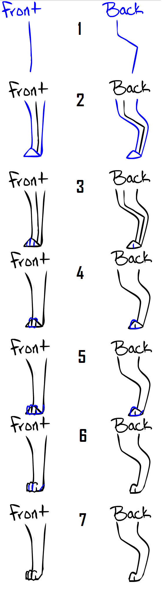 How to draw Dog_Cat legs_feet by Qexx on DeviantArt