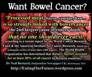 Processed Red Meat Raises Bowel Cancer Risks Rates by eatingourfuture