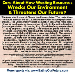 Meat Wastes Finite Resources and Pollutes by eatingourfuture