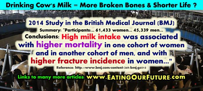 Drink Cow Milk 4 More Broken Bones + Shorter Life