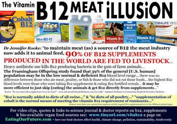 Vitamin B12 Facts Deficiency Supplements Vegans