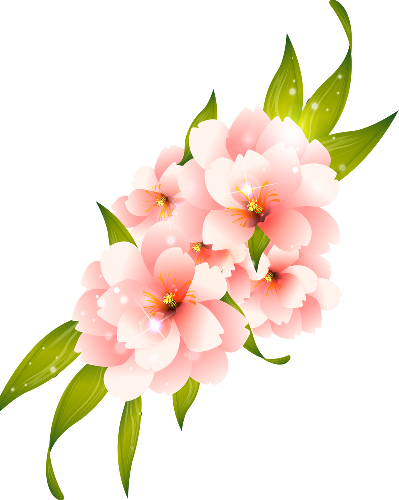 Flower Vector HQ PNG By Cherryproductionsorg
