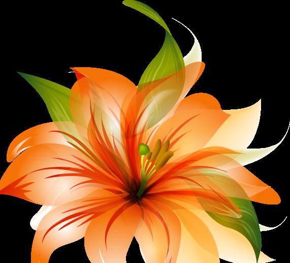 Flower Vector Png Hd