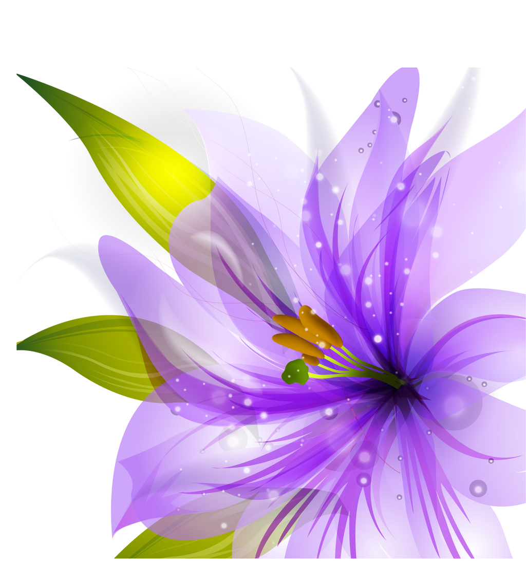 Flower Vector HQ PNG by cherryproductionsorg on DeviantArt