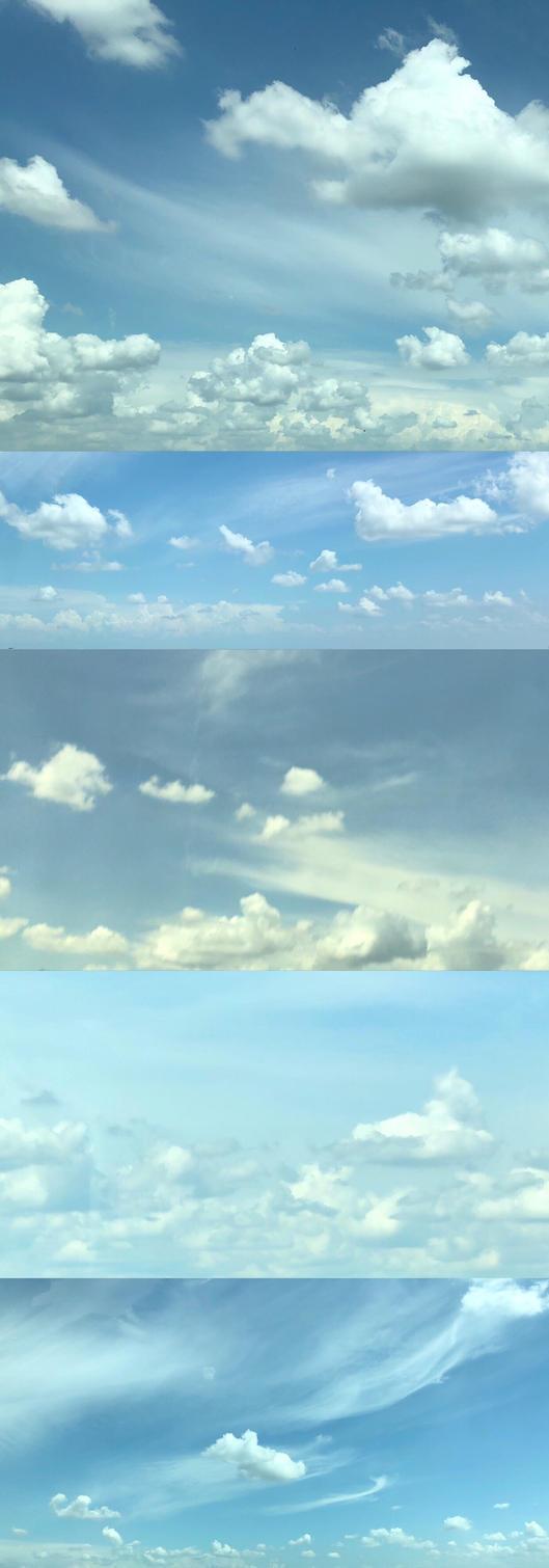 Sunny Moisture Sky Sheep by Kumapaws376