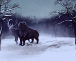Exploration: Dusk and Snow