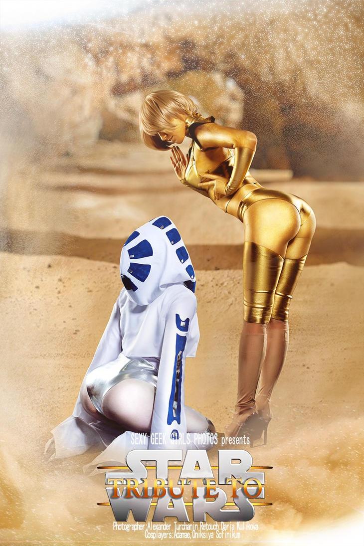 C-3PO and R2D2 by OniksiyaSofinikum