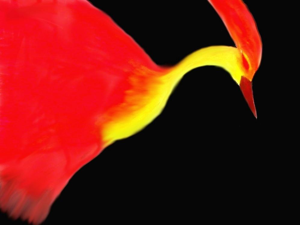 Fire bird by Goldsturm